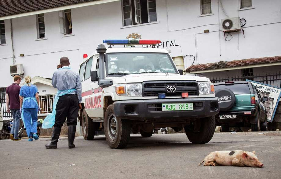 A baby pig sleeps in front of an ambulance used at the Connaught Hospital as part of their Ebola virus fleet, during a three-day lockdown to prevent the spread on the Ebola virus in Freetown, Sierra Leone, Sunday, Sept. 21, 2014. Volunteers going door to door during a three-day lockdown intended to combat Ebola in Sierra Leone say some residents are growing increasingly frustrated and complaining about food shortages. (AP Photo/ Michael Duff) Photo: Michael Duff, STR / AP
