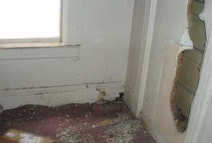Holes had been knocked into many interior walls.