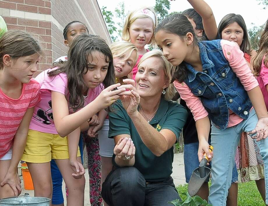 Stephanie Baker, center, leads a group of third-graders as they examine a frog found in the soil while planting cauliflower during her gardening class at Sampson Elementary in Cypress. Photo: Copyright Tony Bullard 2014, Freelance Photographer / Copyright 2014 Tony Bullard & the Houston Chronicle