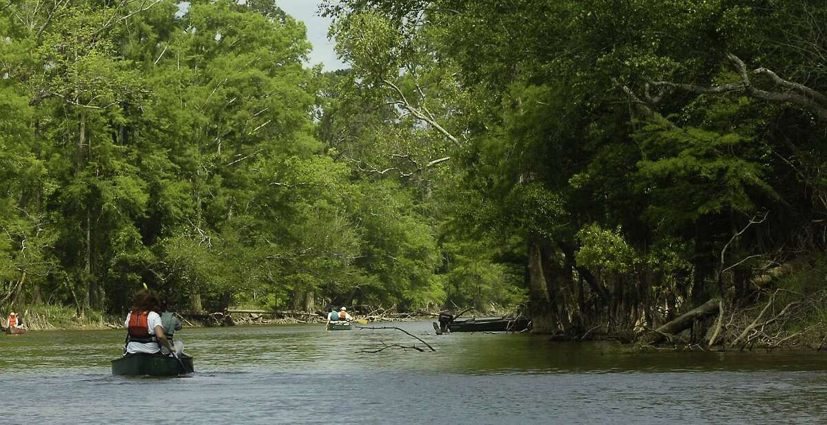 Canoers paddle up stream on Village Creek near one of the new Village Creek Paddling Trail put in-take out sites. On Tuesday the state park opened the state's newest 21 mile paddling trail that starts at Farm Market 418 to celebrate Texas Travel Rally Day. Dave Ryan/The Enterprise