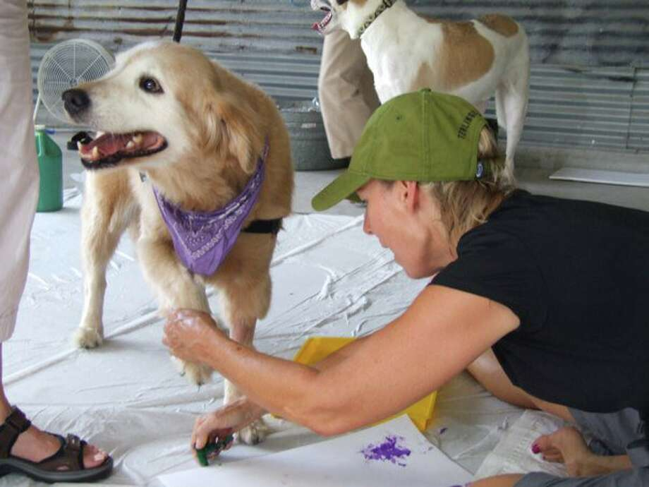 Paws Paint party Let your pooch explore its inner artist at the Picasso's By Paws fundraiser at Urban Tails. For a minimum $10-$20 suggested donation, your pet gets its own canvas and water-based paints. The free event is sponsored by Bayou City Outdoors, a club that organizes events for singles and couples of all ages.  When: 2-4 p.m. Saturday Where: 1618 Webster Information: bayoucityoutdoors.com Photo: Courtesy Photo