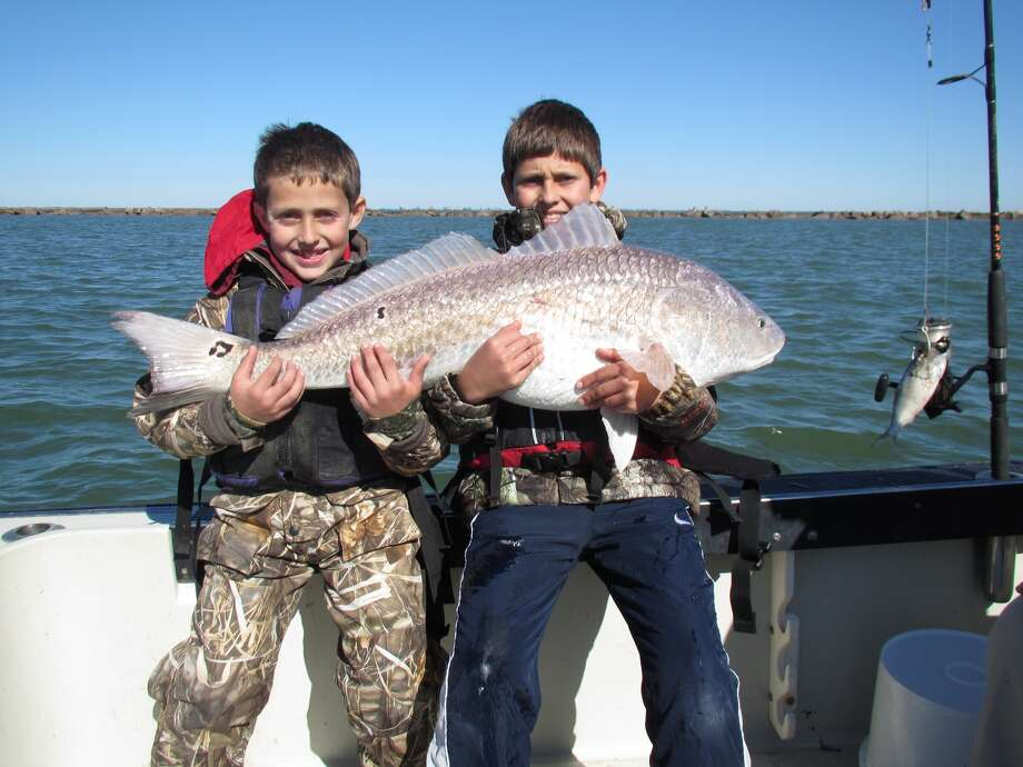 Aden and Chandler Elliott with their 45 pound catch hauled out of Galveston Bay on Thanksgiving day 2013. (Timothy Elliott). Photo: Timothy Elliott