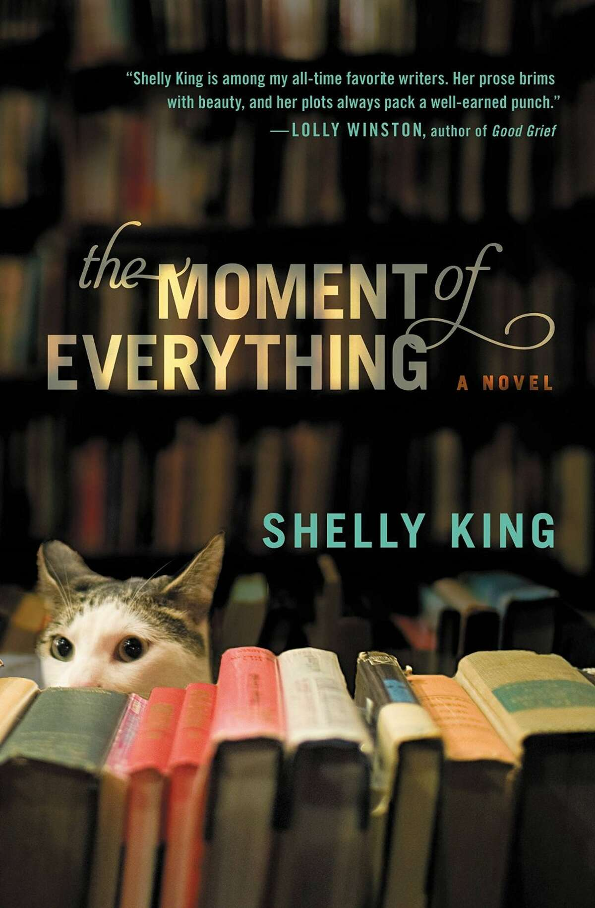 ?The Moment of Everything? (Hachette, September) by Shelly King.