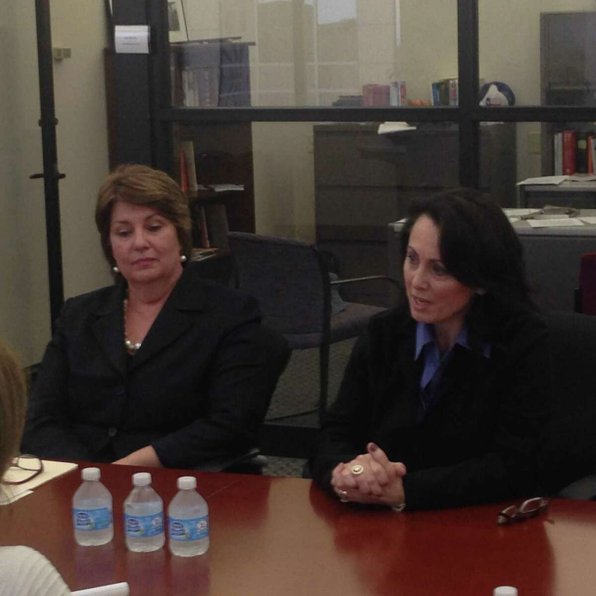 Candidates for the 280th Family District Court, Democrat Barbara Stalder, and Republican Lynn Bradshaw-Hull, the incumbent, meet before the Houston Chronicle editorial board. The editorial board recommends Stalder.