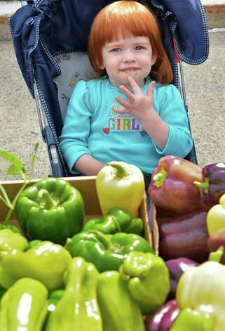 One-year-old Adele Makham waits for her mother to shop at the Fort Hunter Farms' booth at the Shenectady Farmers' Market at City Hall Thursday, Sept. 25, 2014, in Schenectady, NY.  (John Carl D'Annibale / Times Union) Photo: John Carl D'Annibale, Albany Times Union
