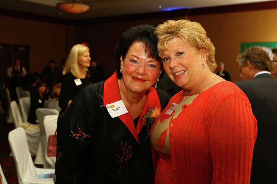 Were you Seen at the Rensselaer County Regional Chamber of Commerce's annual Van Rensselaer Awards event at the Hilton Garden Inn in Troy on Tuesday, Sept. 23, 2014? Photo: Denis J. Nally