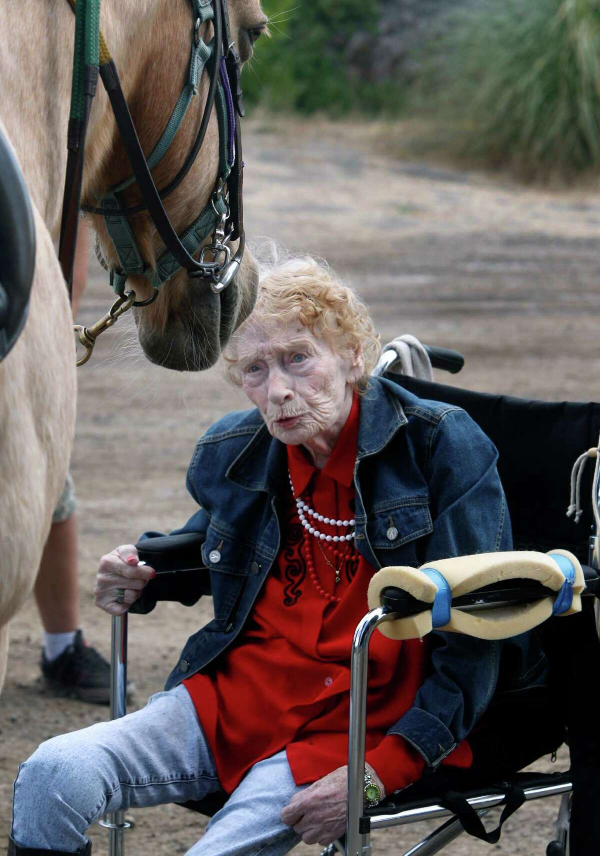 Ninety-year-old Thea Murphy, who uses a wheelchair, meets Katydid before riding the palomino.