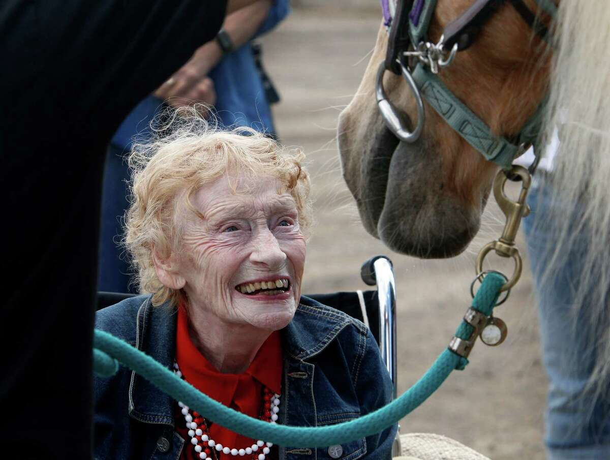 Ninety-year-old Thea Murphy meets Katydid before riding the Palomino at the Giant Steps Therapeutic Equestrian Center in Petaluma, Calif. on Friday, Sept. 26, 2014. Murphy's lifelong dream to ride a horse was made possible by the Napa-based Celebrating Seniors organization.