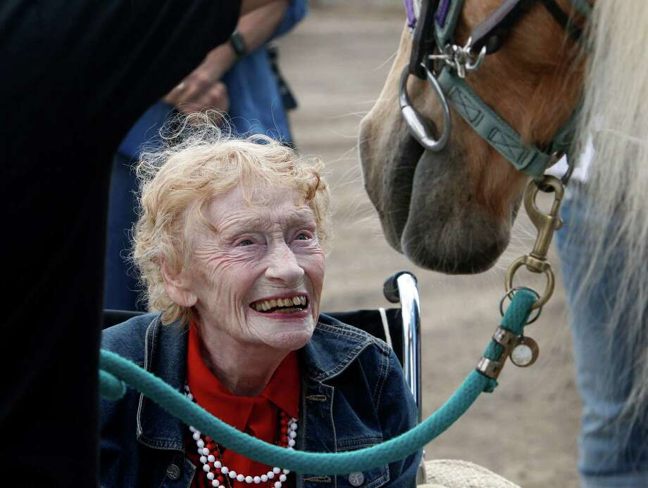 Ninety-year-old Thea Murphy meets Katydid before riding the Palomino at the Giant Steps Therapeutic Equestrian Center in Petaluma, Calif. on Friday, Sept. 26, 2014. Murphy's lifelong dream to ride a horse was made possible by the Napa-based Celebrating Seniors organization. Photo: Paul Chinn / The Chronicle / ONLINE_YES