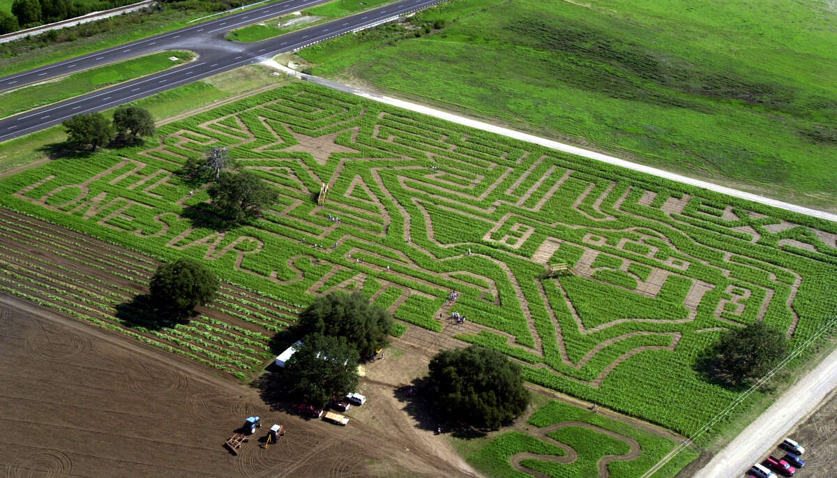The South Texas Maize opened its 7-acre field near Hondo, TX. Friday Sept. 2, 2001.