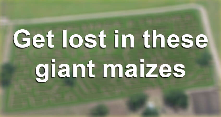 """Would you make your way through these giant mazes made of corn?  Scroll through the slideshow to see """"maizes"""" over the years. Photo: File Photo"""