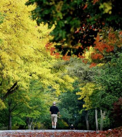Fall color is in full display in portions of Washington Park Monday morning Sept. 29, 2014 in Albany, N.Y.       (Skip Dickstein/Times Union) Photo: SKIP DICKSTEIN, ALBANY TIMES UNION