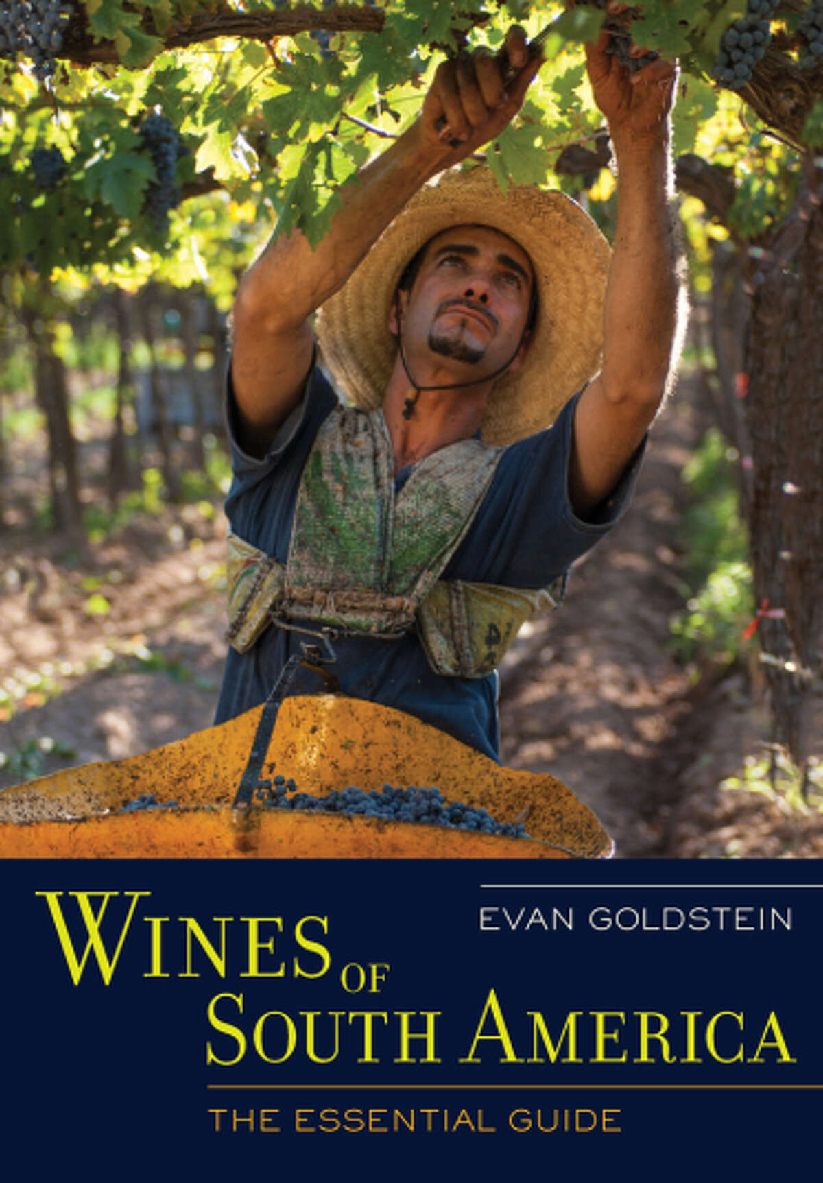 """""""Wines of South America: The Essential Guide,"""" by Evan Goldstein."""
