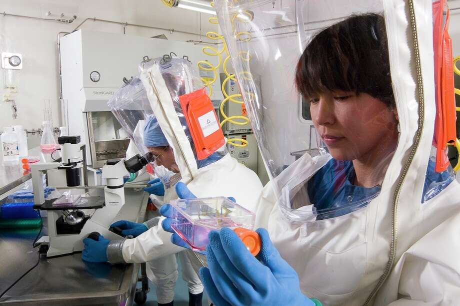 A University of Texas Medical Branch researcher works in the lab. UTMB is helping in the worldwide fight against the Ebola and Marburg viruses. Photo: UTMB-Galveston / ONLINE_YES