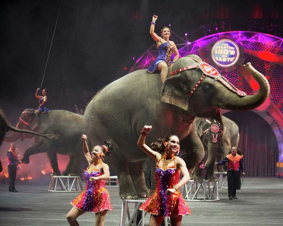 Ringling Bros. and Barnum & Bailey's Greatest Show on Earth is coming to Bridgeport Thursday through Sunday. Find out more.  Photo: Contributed Photo / Connecticut Post Contributed