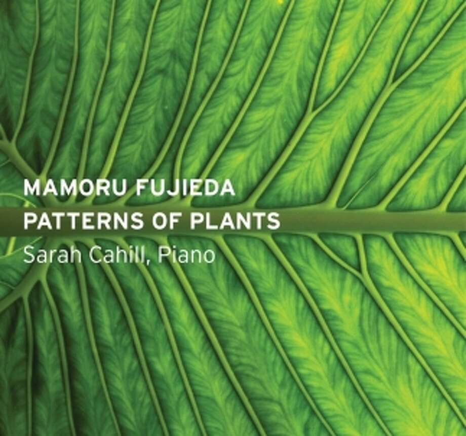 "Mamoru Fujieda, ""Patterns of Plants"" Photo: Pinna Records / ONLINE_YES"