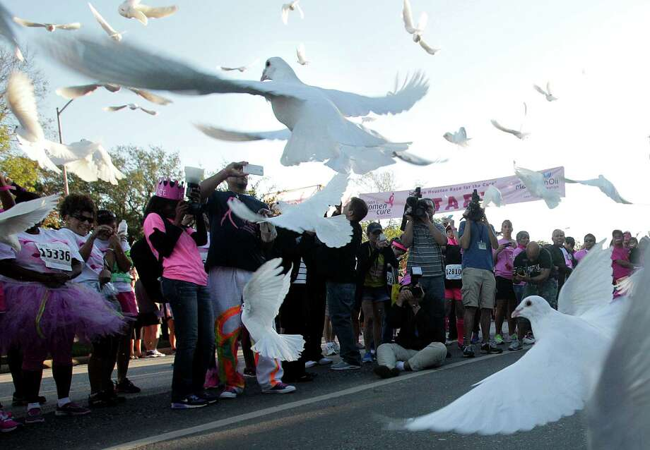 Memorial birds are released at the start of the 2014 Susan G. Komen Race for the Cure on Saturday, Oct. 4, 2014, in Houston. Photo: Mayra Beltran, Houston Chronicle / © 2014 Houston Chronicle