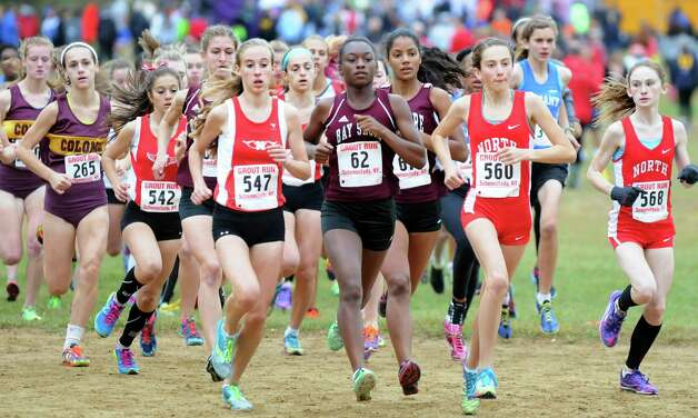 Girls' Division II runners begin the cross country Grout Run on Saturday, Oct. 4, 2014, at Central Park in Schenectady, N.Y. (Cindy Schultz / Times Union) Photo: Cindy Schultz / 00028844A
