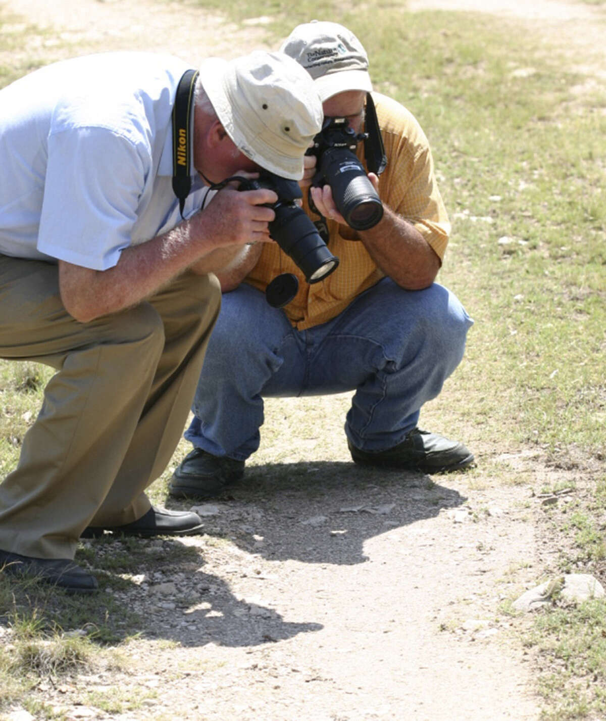 Mike Duran of the Nature Conservancy and Ralph Axtell of Southern Illinois University shoot photos of a spot-tailed earless lizard.