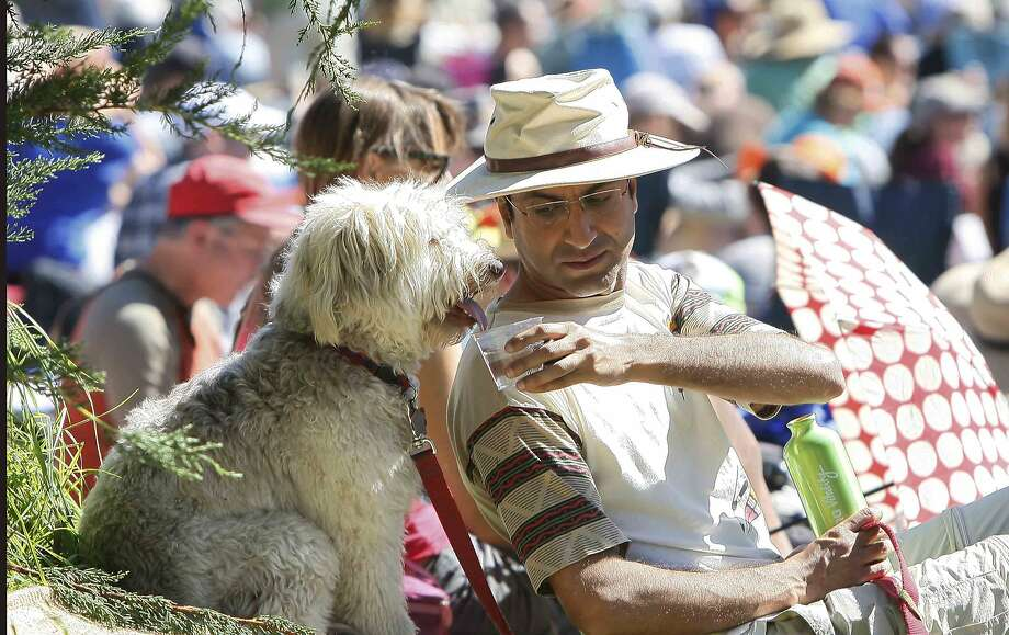 Gaurav Marwaha gives his dog, Oscar, a sip of water during the third day of the Hardly Strictly Bluegrass Festival in San Francisco's Golden Gate Park Sunday, October 5, 2014. Photo: Jessica Christian, The Chronicle