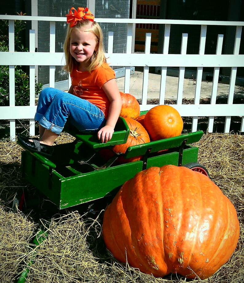 "Woodcrest United Methodist Church, 1684 Hwy. 96 South in Lumberton, will open its annual pumpkin patch on Oct. 11. Pictured; Claire Smith with ""Bix Max.""  HCN file photo Photo: David Lisenby, HCN_Harvest / Gail Smith, Woodcrest United"