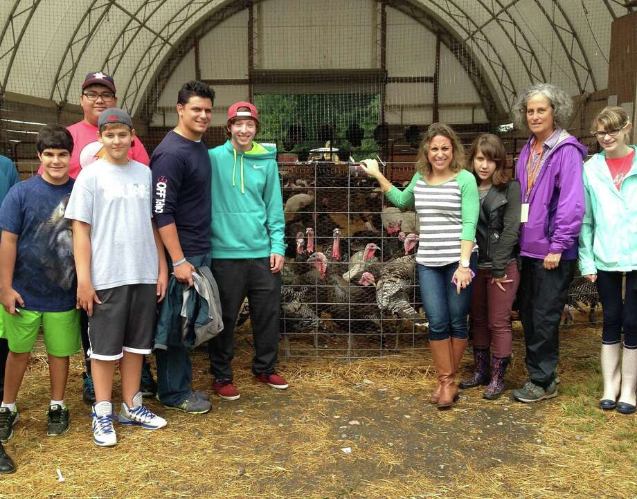 Greenwich Education Group Upper School students, faculty and Stone Barnes farmers check out turkeys for this Thanksgiving during a recent school trip to the Tarrytown, N.Y. learning center. Photo: Contributed Photo / Stamford Advocate Contributed photo