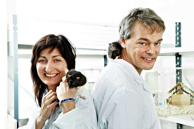 May-Britt Moser and her husband, Edvard Moser, were honored for their work at the Norwegian University of Science and Technology. Photo: Associated Press / NTNU