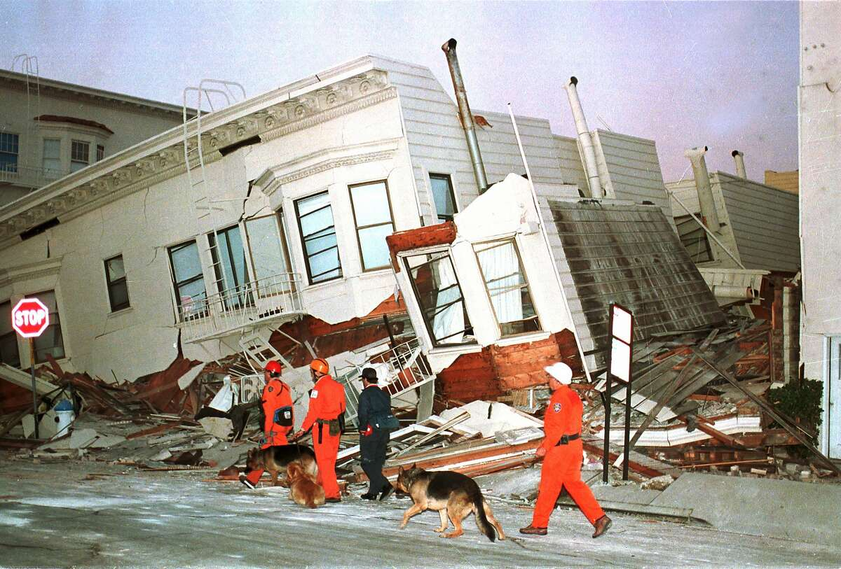Rescue dogs are brought into position to begin searches of destroyed houses in the Marine District of San Francisco on Wednesday morning after the Loma Prieta earthquake caused widespread damage, Oct. 18, 1989.