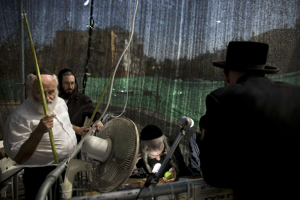 An ultra-Orthodox Jewish man checks an etrog, a lemon-like citrus fruit, for blemishes to determine if is ritually acceptable, before buying it as one of the four items used as a symbol on the Jewish holiday of Sukkot, in Netanya, Israel, Monday, Oct. 6, 2014. The holiday commemorates the biblical story of the Israelites 40 years of wandering in the desert and decorated huts are erected outside religious households as a symbol of temporary shelter. (AP Photo/Oded Balilty)