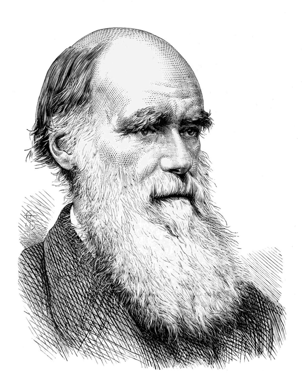 Charles Darwin He was already a celebrated naturalist and formulating his theory of natural selection by the time he turned 28.