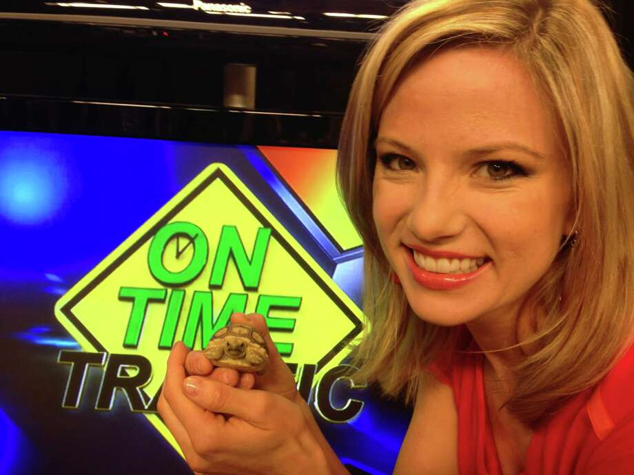 WOAI/KABB traffic anchor Jessica Headley has a soft spot for turtles -- had 18 as pets when she was a kid -- and scooped this one up to add more zing to her morning show segments. Photo: Courtesy Jessica Headley / San Antonio Express-News