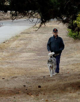 A man walks a dog on the east side of Sunset Boulevard on Tuesday, September 9, 2014. A new app called WoofTrax acts as both a distance tracker and a fundraising tool for area animal shelters.