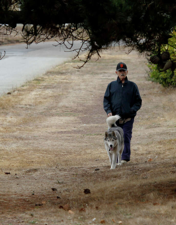 A man walks a dog on the east side of Sunset Boulevard on Tuesday, September 9, 2014. A new app called WoofTrax acts as both a distance tracker and a fundraising tool for area animal shelters. Photo: Brant Ward / The Chronicle / ONLINE_YES