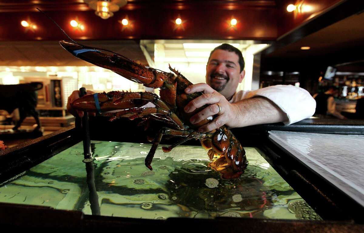Chef Michael Velardi holds a lobster at Pappas Bros. Steakhouse, Tuesday, April 17, 2012, in Houston. ( Karen Warren / Houston Chronicle )