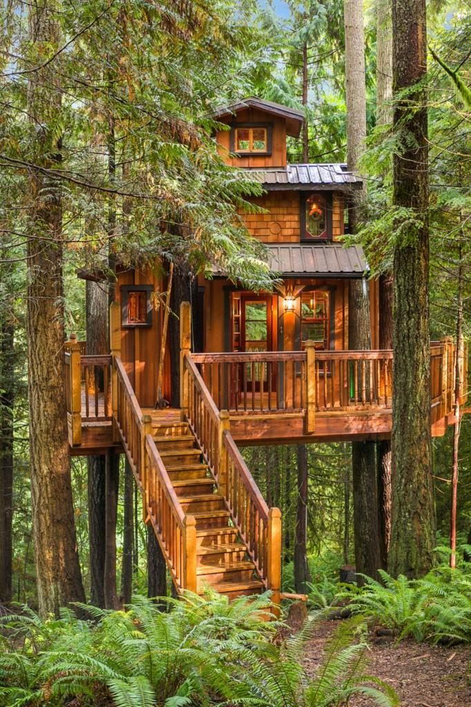Tree House Plus Normal One For Sale In Woodinville