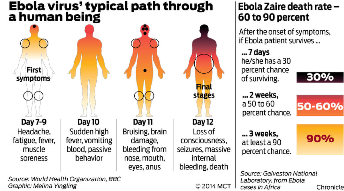 Ebola virus' typical path through a human being