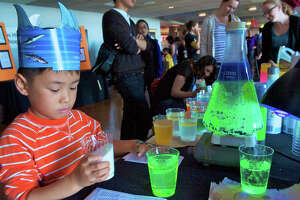 Bay Area Science Festival - Photo