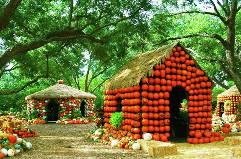 By The Numbers Dallas Arboretum 39 S Pumpkin Village Houston Chronicle