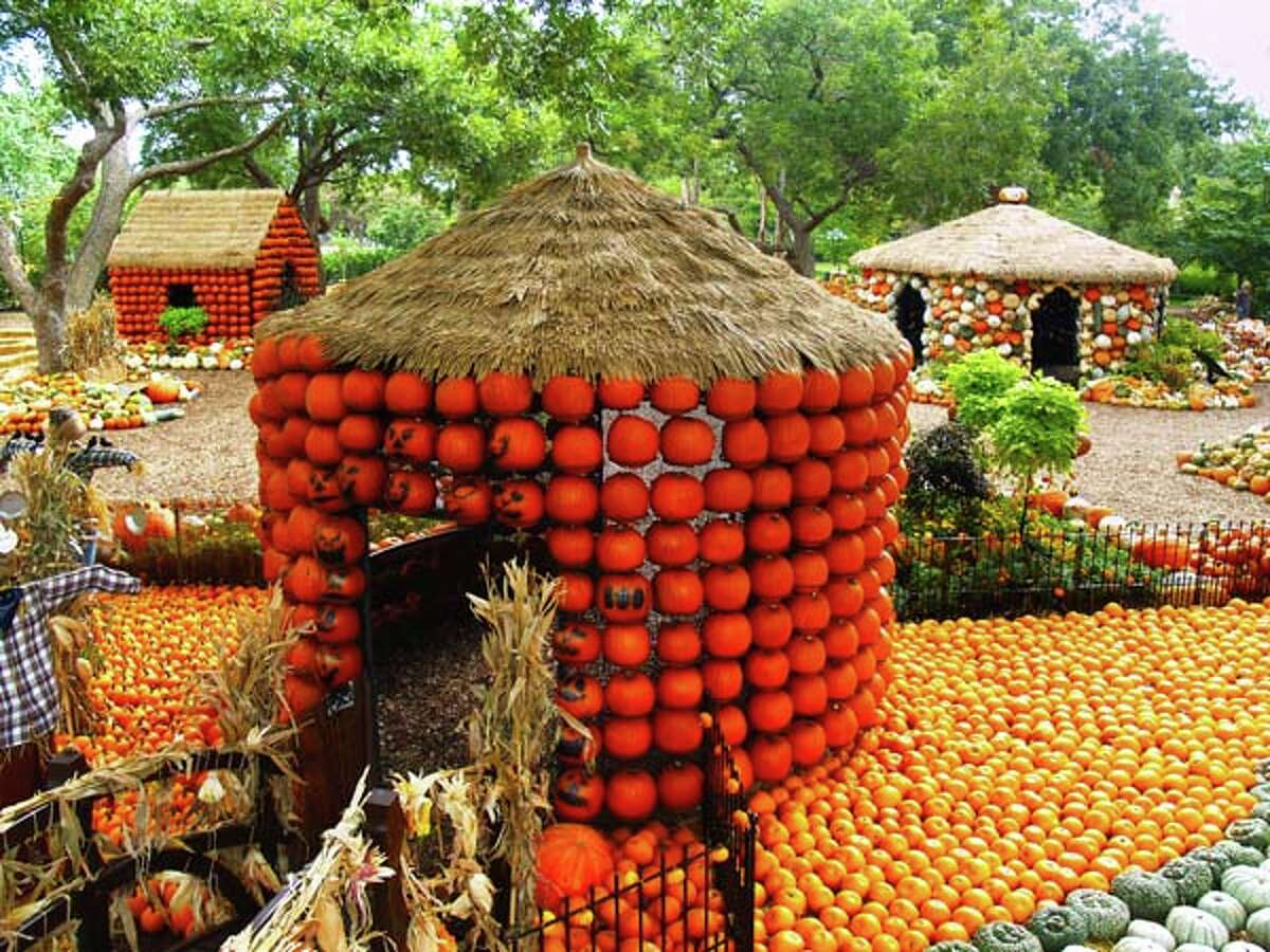 By the numbers: Autumn at the Dallas Arboretum 9: Number of years the arboretum has had the Pumpkin Village