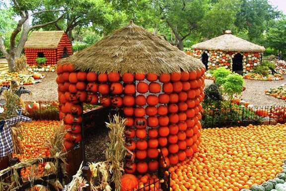 Pumpkin Village at the Dallas Arboretum & Botanical Garden