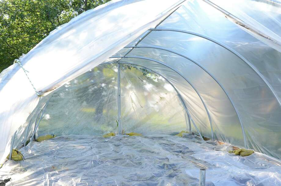 A greenhouse is solarized through a treatment using clear plastic to heat the top layer of soil and kill weeds. Photo: Barbara Damrosch / For The Washington Post / For The Washington Post / THE WASHINGTON POST