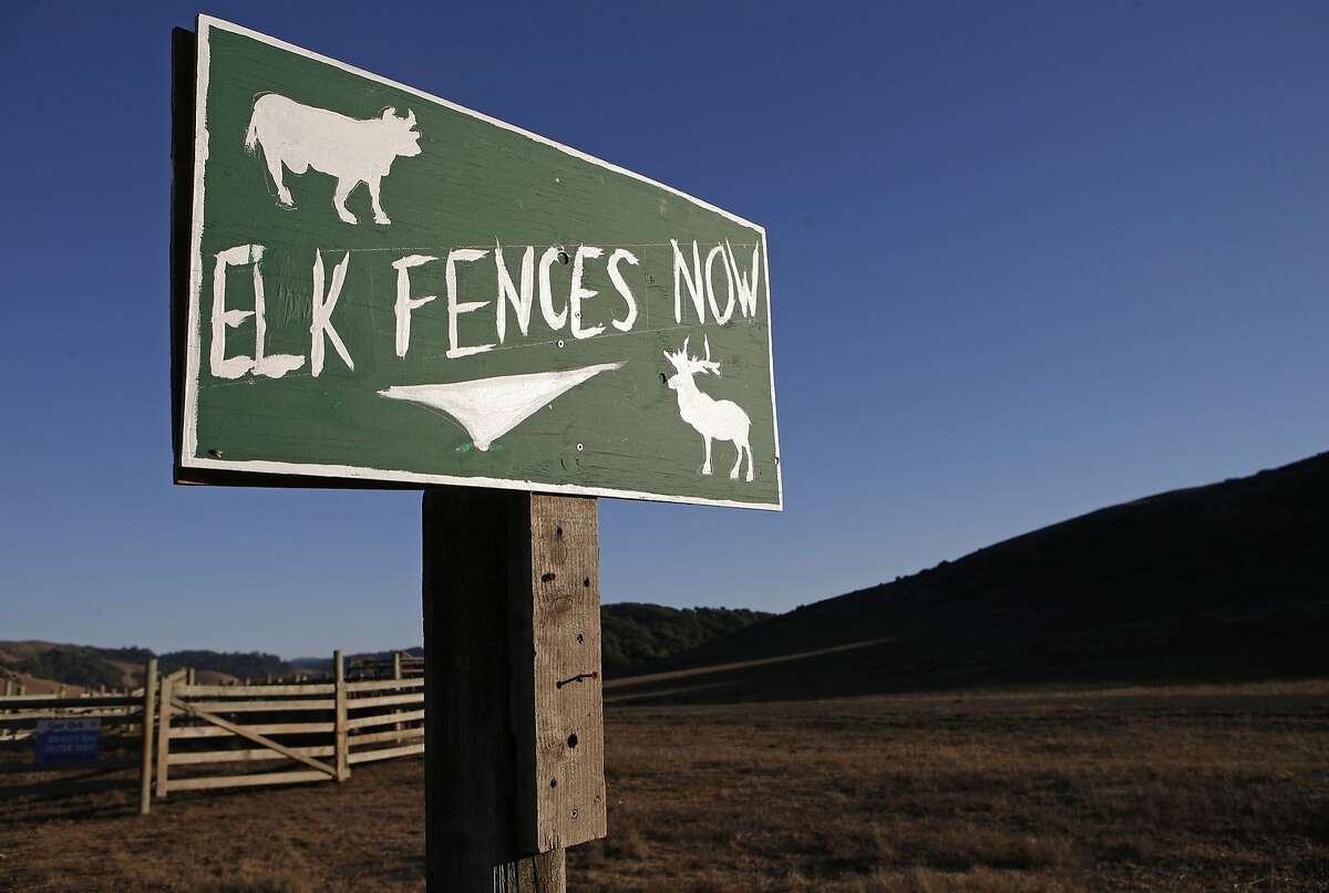 A sign displays an opinion near the Point Reyes National Seashore, Calif., on Thursday Oct. 2, 2014. Ranchers are complaining about the tule elk along the Point Reyes National Seashore, because they have begun roaming onto their grazing lands, knocking down fences and foraging where their cattle forage. The ranchers want the elk removed and fenced off, but conservationists think they should roam free.