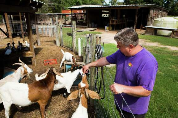 Jim Jenkins, whose Montgomery home is surrounded by a dozen acres of animals, feeds his goats at Sunshine Farm. He's near FM 149, where dozens of billboards promote planned housing and commercial developments.