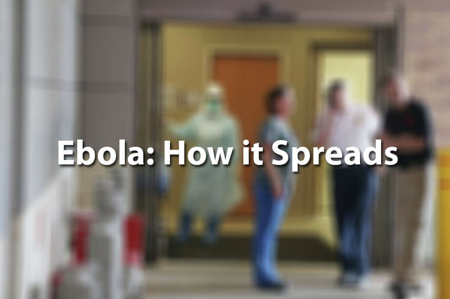 A health care worker in Dallas who provided care for the country's first Ebola patient tested positive for the deadly virus. Here is a look at how the disease spread.