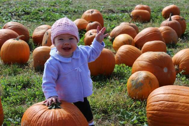 "Madison Baker of Wynantskill visited Goold's Orchards this fall in search of the ""great pumpkin,"" along with grandparents Sandra and Thomas Bishop of the town of Nassau.  (Photo submitted by Sandra & Thomas Bishop)"