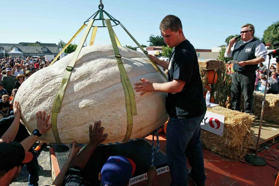 Volunteers hoist the 2,058-pound pumpkin after it was crowned first place at the 41th Half Moon Bay competition. Photo: Jessica Christian / The Chronicle / ONLINE_YES