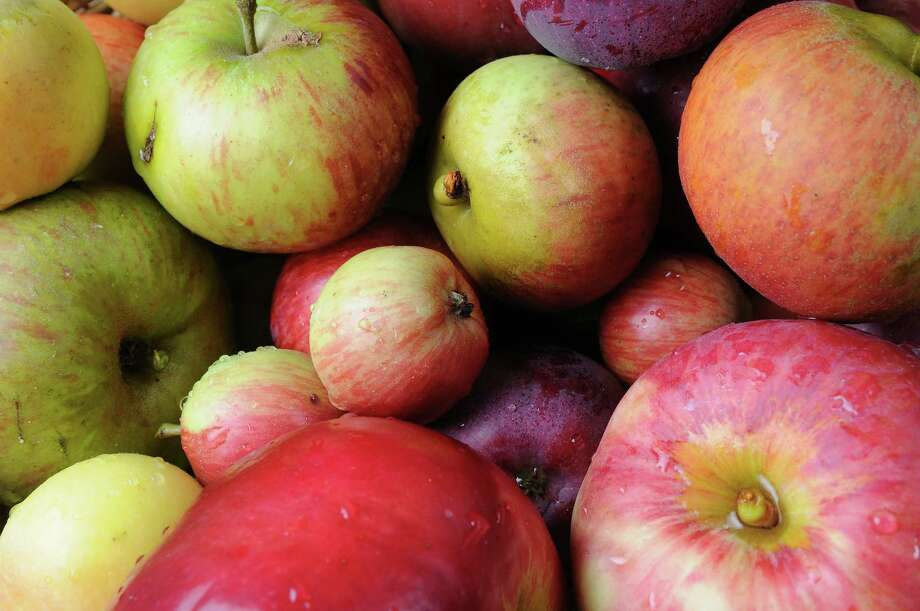 This week you can sample at least 50 kinds of apples — some obscure, others spectacular, many luscious — at the annual tasting hosted by the Monterey Bay chapter of the California Rare Fruit Growers. Photo: James Tensuan / Special To The Chronicle / ONLINE_YES