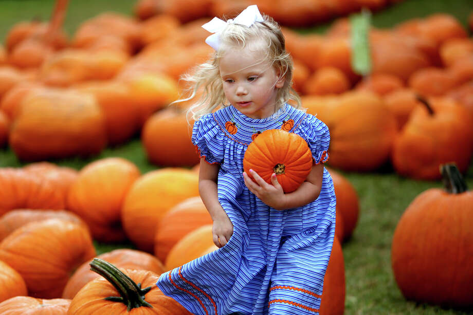 Why every Texan loves autumnWhen the cool air masses push down from the north, every Texan knows that regardless of what the calendar says, fall is finally fall. Here's why autumn is every Texan's favorite season Photo: Gary Coronado, Houston Chronicle / © 2014 Houston Chronicle