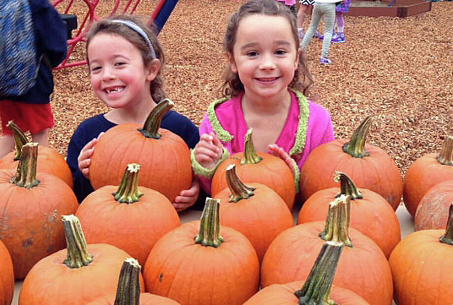 Plenty o' pumpkins picked fresh from the patch, admired here by Rowan Troy and Lizzy Sullivan, will be featured at the annual Pumpkin Carnival on Saturday at Tokeneke Elementary School. The fair, from 10 a.m to 4 p.m., will have a host of Halloween-themed activities, amusement rides and seasonal treats from local vendors. For details, check the story on page A11. Photo: Contributed Photo / Darien News