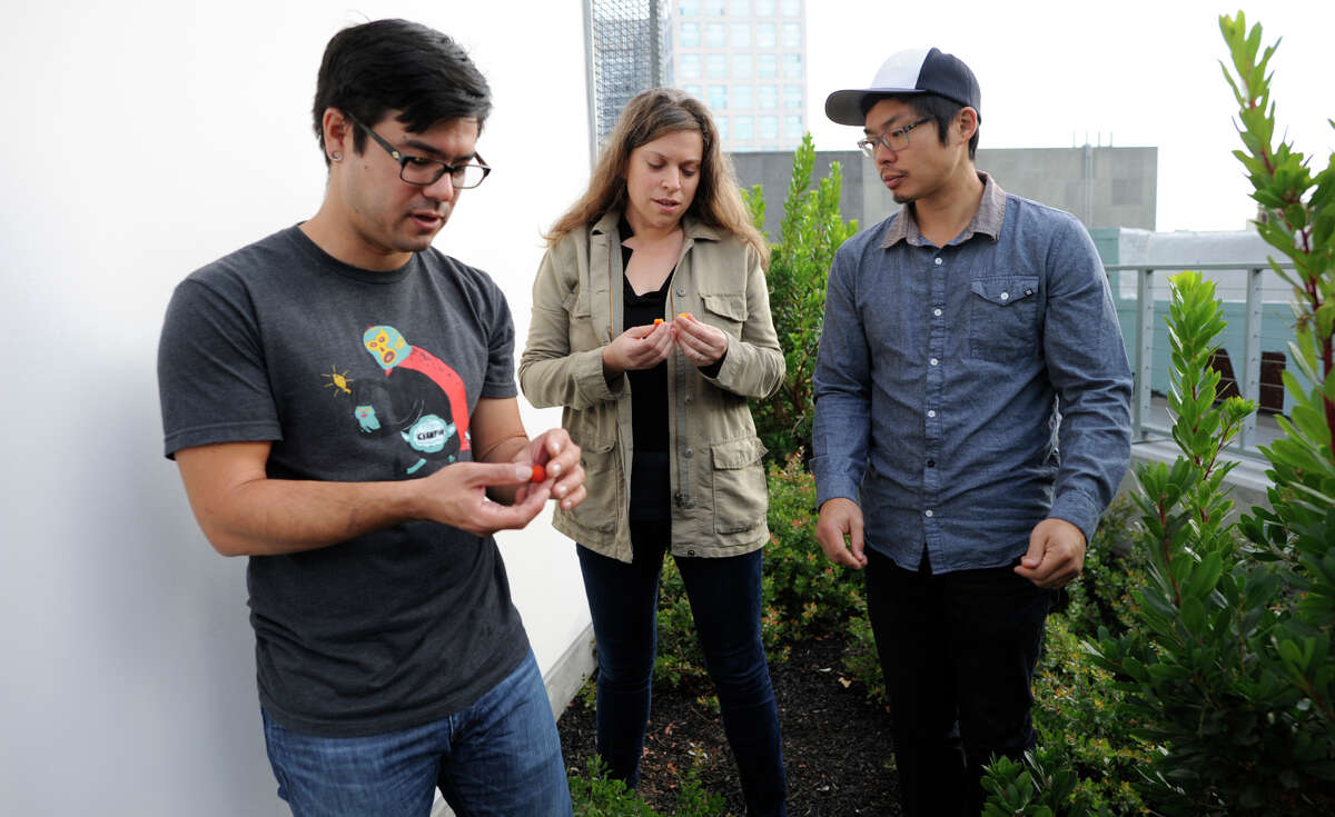 Chef Chris Kiyuna and husband-and-wife restaurateurs Karen Leibowitz and Anthony Myint sample berries on a bush on the garden deck of their forthcoming restaurant, the Perennial, on the ground floor of the AVA building on Ninth Street in San Francisco.